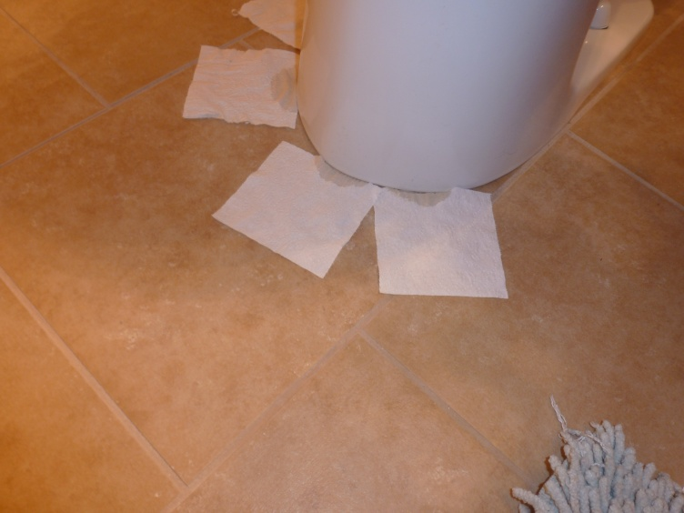 Grout is Wet next to toilet-002.jpg