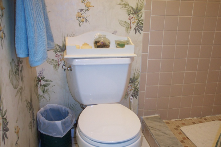 relocating toilet-002.jpg