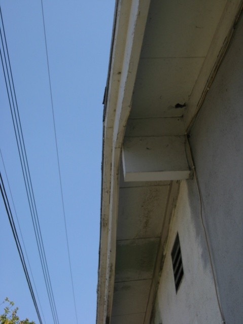 Where/Why Was This Roofing Used-003.jpg