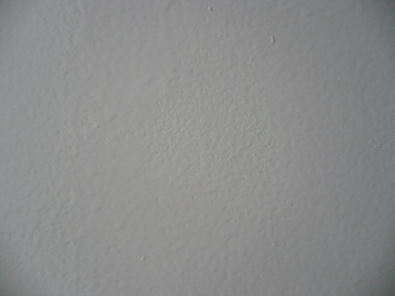 painted my bathroom walls with zinsser perma white-005.jpg