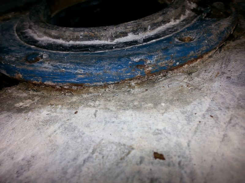 Is this a plant growth under the toilet foot?-008.jpg