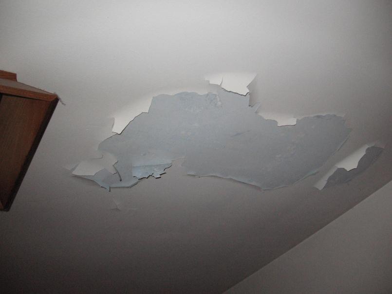 Peeling ceiling paint-010.jpg