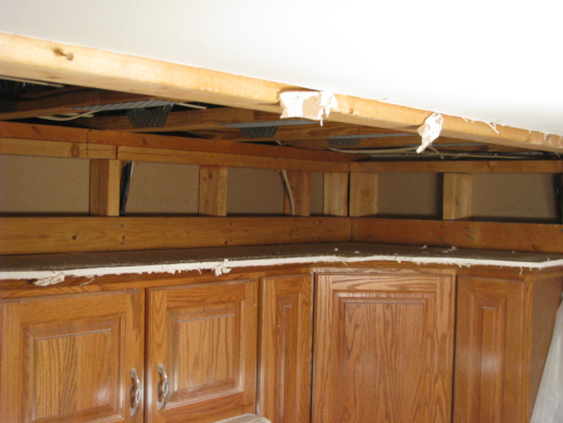 Yet another question: Suspended Ceiling 2x4 Frame Removal-011_optimized.jpg