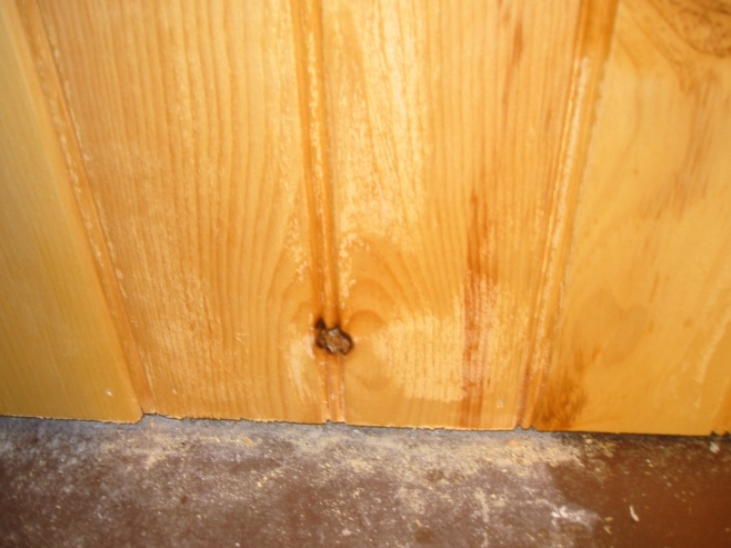 Knotty Pine Problems-012.jpg