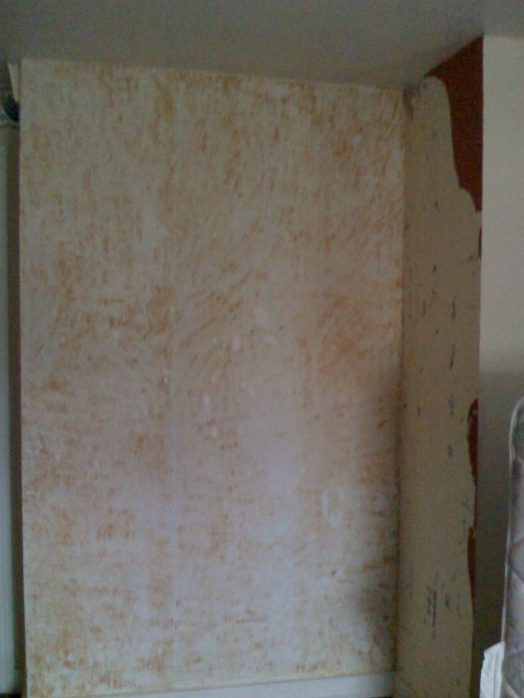 Removing glue on wall from wallpaper-0120101538a.jpg