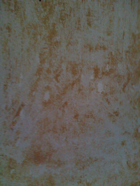 Removing glue on wall from wallpaper-0120101538b.jpg