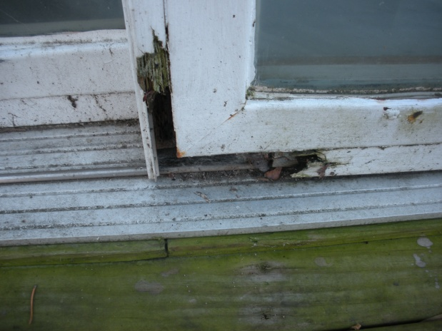 Hole in Wooden Exterior Door Jam-016.jpg