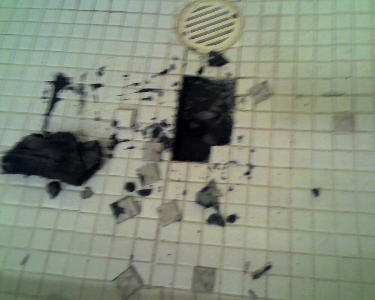 Possible Mold Under Shower Tiles Flooring DIY Chatroom Home - Bathroom tile mold