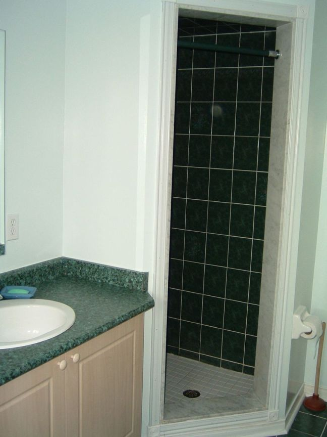 installing lights in shower stall-050220-01-ensuite-bathroom.jpg