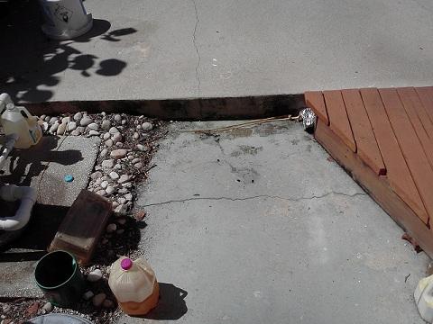 Need flooding advice-0517121105.jpg