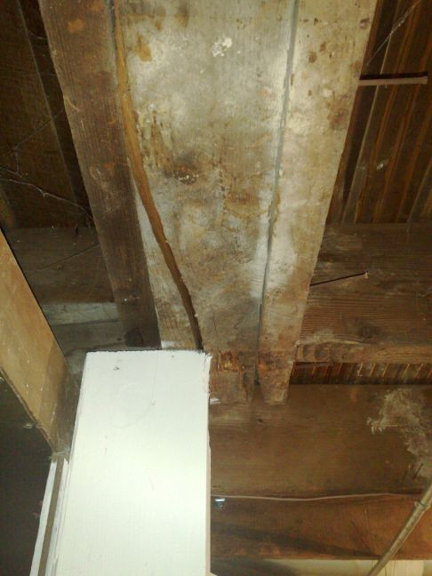Need advice on basement support column problem-05272009210.jpg