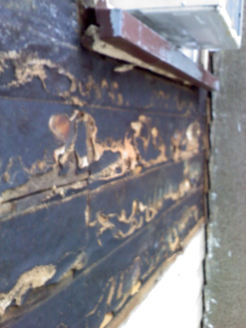What do I put on exposed wood until siding is put up?-0609101018.jpg