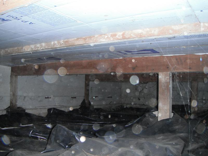 Crawl space moisture/water removal-064.jpg