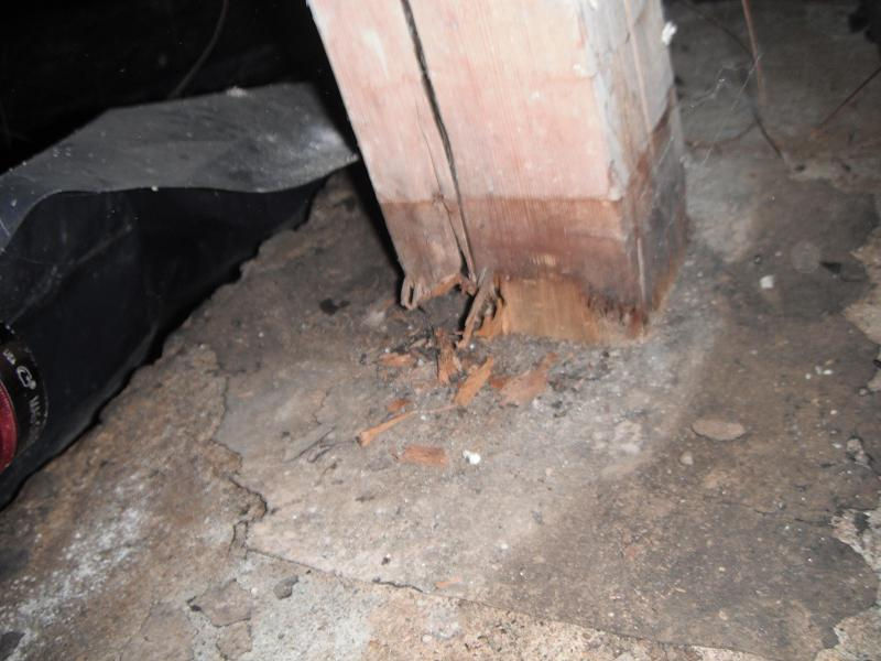 Crawl space moisture/water removal-069.jpg