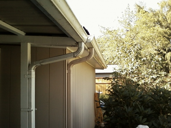 Out door remodel help needed-0825121646a.jpg