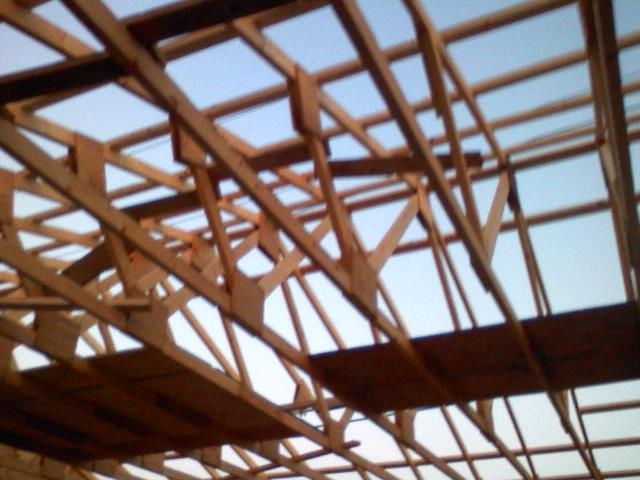 has anyone done this  homemade trusses-0925101914a.jpg
