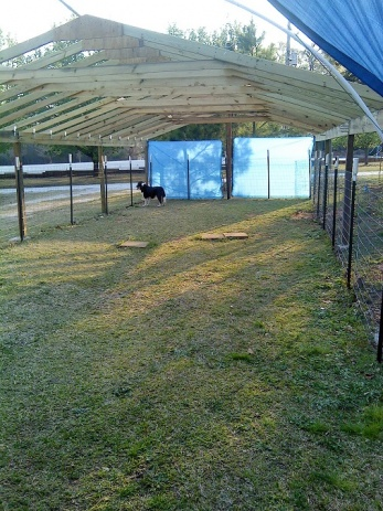 Rafter spacing for tarp covered canopy-1-canopy-.jpg