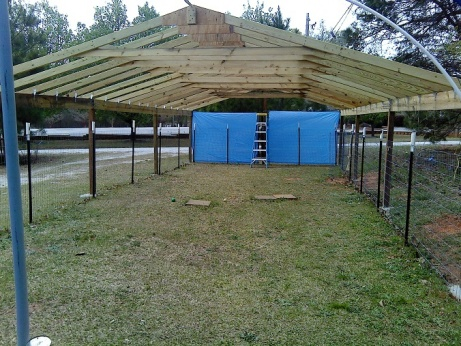 Rafter spacing for tarp covered canopy-1-canopy-e.jpg