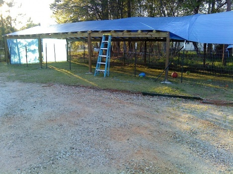 Rafter spacing for tarp covered canopy-1-canopy-g.jpg