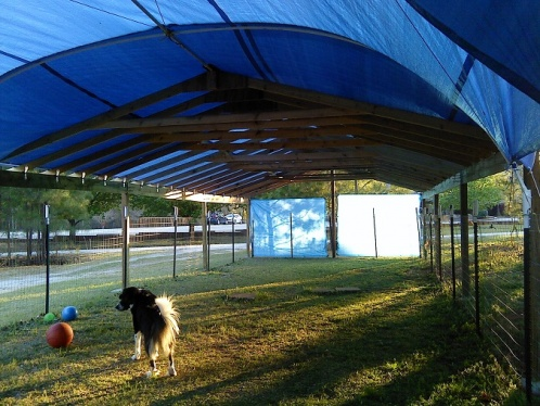 Rafter spacing for tarp covered canopy-1-canopy-k.jpg