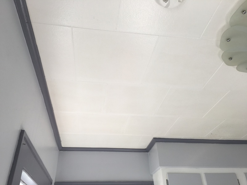 Acoustic Ceiling Tile Identification Insulation Diy Chatroom