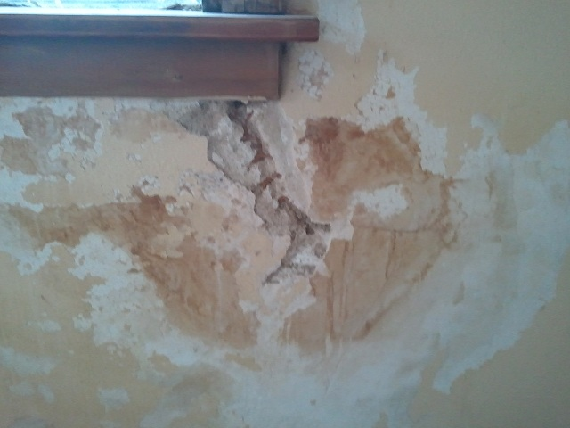 Plaster repair questions-1.jpg