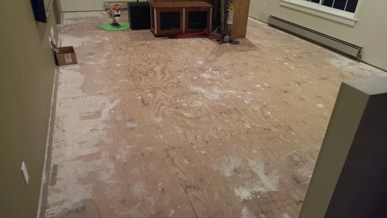 Prepping for Hardwood: SCREWS + EXISTING NAILS into SUBFLOOR OVERKILL?-1.jpg