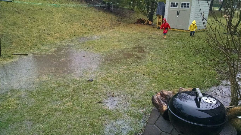 Standing Water In Backyard + Slow Leak In Basement-10.jpg