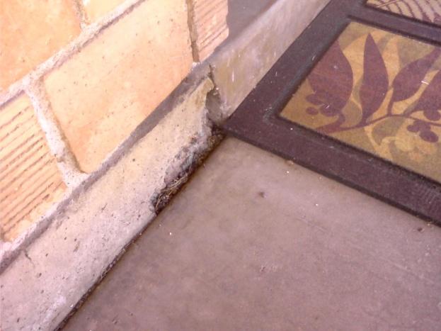 Crumbling stem wall-1003091335a.jpg