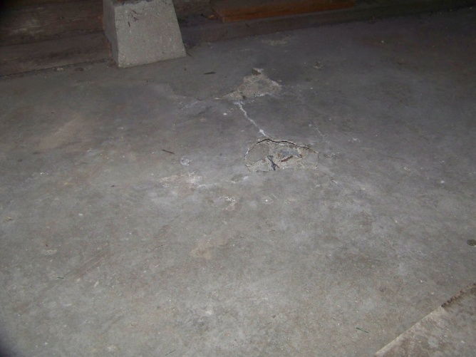 Basement floor cracking and rising...-100_0118.jpg