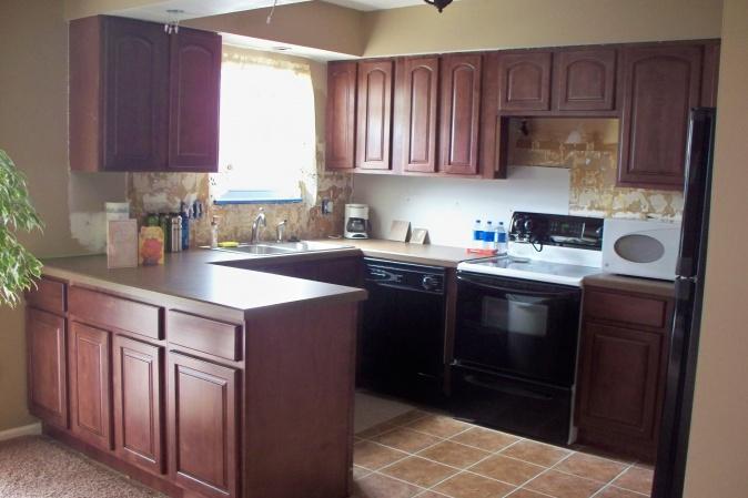 Beau ... Redoing Kitchen 100_0358