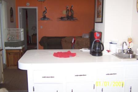 kitchen cabinets-100_0684.jpg