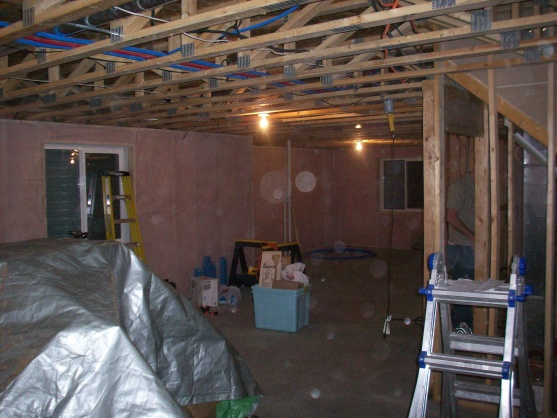Basement Finish with Projector and Media Cabinet-100_0687.jpg