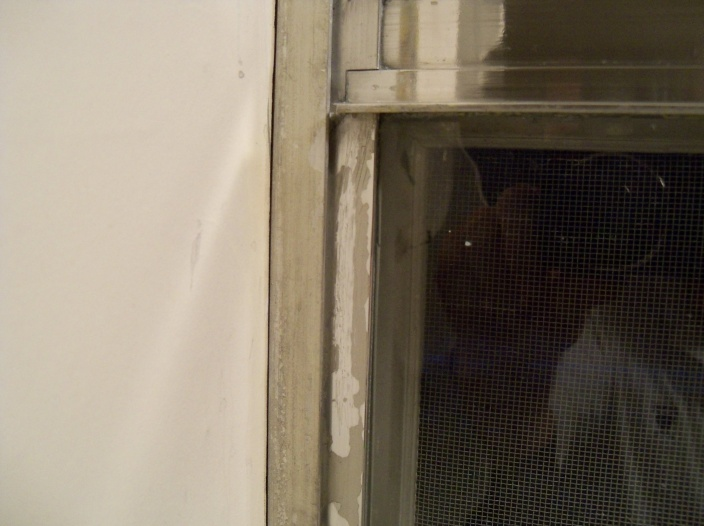 Aluminum Window rehab-100_0853.jpg