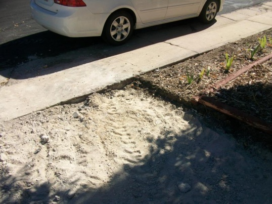 cracked driveway + leaning retaining wall = now what?-100_1079b.jpg