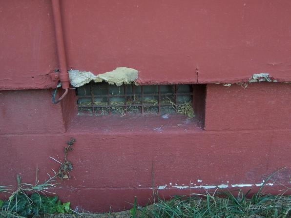 Siding repair-100_1856.jpg