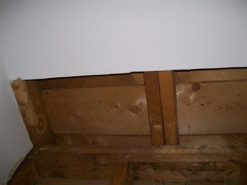 Cutting through floor joists-100_1920-medium-.jpg