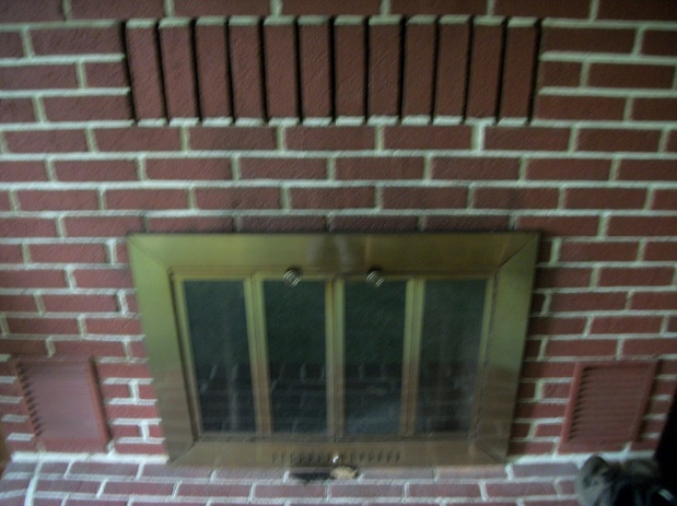 Fireplace insert vs heatilator-100_2287.jpg
