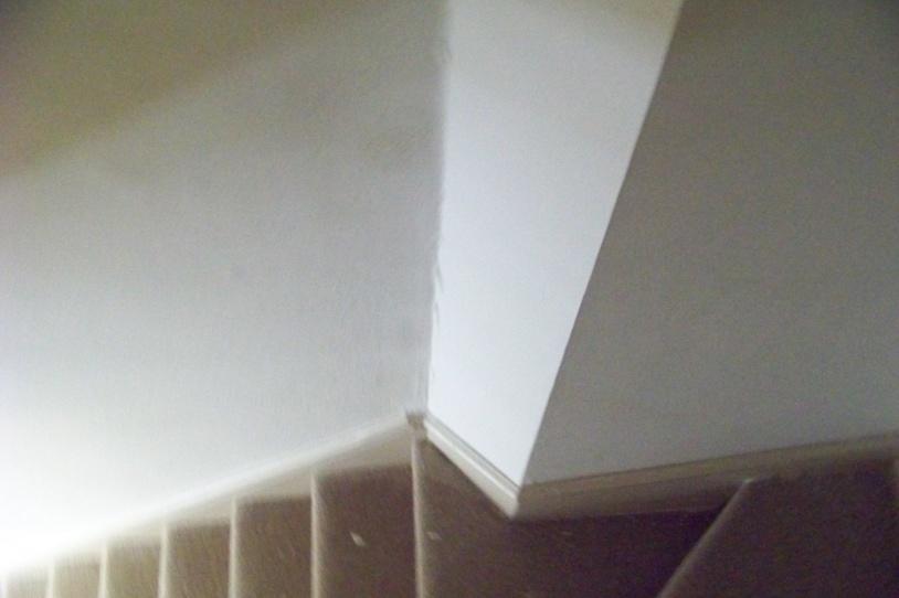 Plaster Restoration-100_2981.jpg