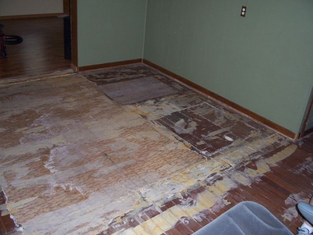 Flooring Under Carpet-100_5968.jpg