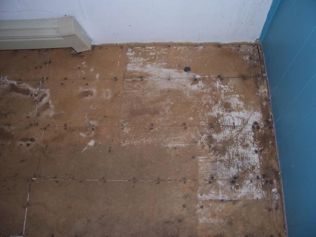 Flooring Under Carpet-100_5977.jpg