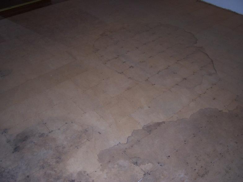 Flooring Under Carpet-100_5978.jpg