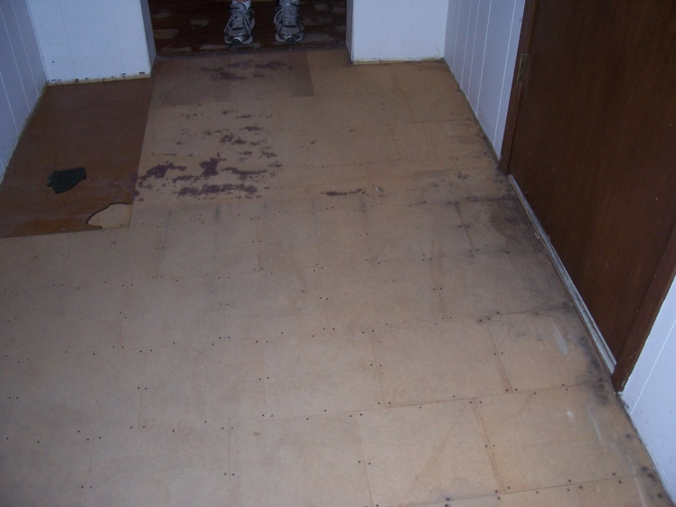 Flooring Under Carpet-100_5980.jpg