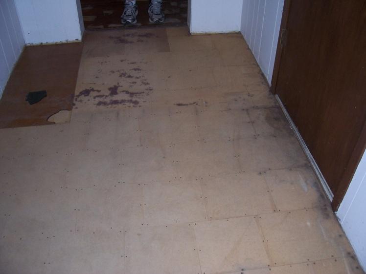Flooring Under Carpet-100_5980.jpg