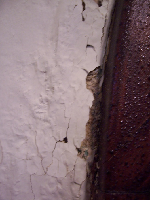 Leak from roof or brick?-100_7358.jpg