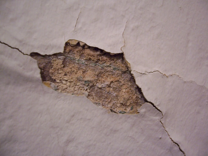 Leak from roof or brick?-100_7362.jpg