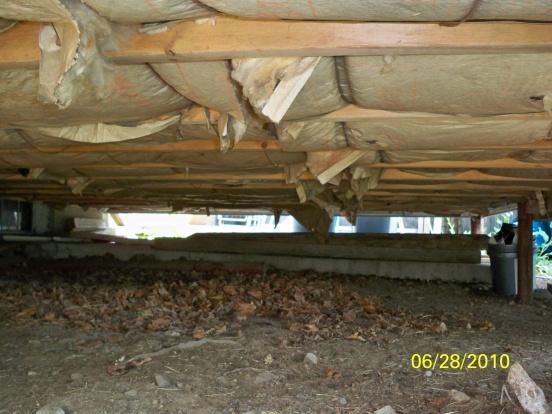 Installing insulation under addition.-101_0407.jpg