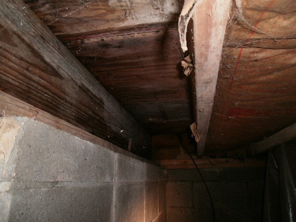 foundation and rot repair-1170499163_qnskx-m-1.jpg