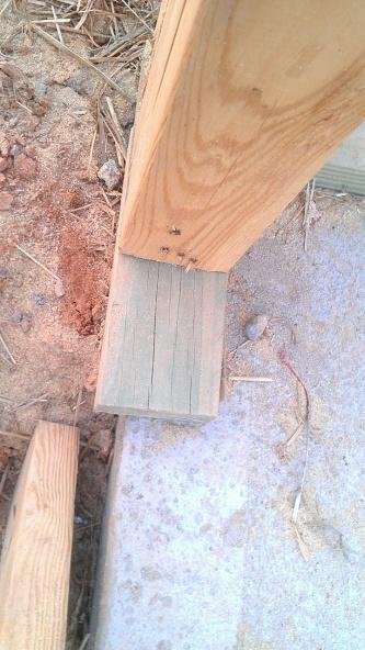 Garage Door Framing Question-12-8fece290-774583-1280.jpg