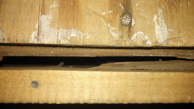 Open-Riser Staircase Help - Convert or Rebuild?-12a.jpg